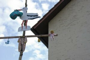 Stork delivers baby to Dutch home of newborn baby